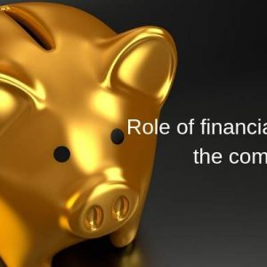 Know the role of financial advisor in company
